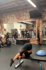 NICOLE SCHERZINGER Workout at a Gym - Instagram Pictures and Video 06/07/2019