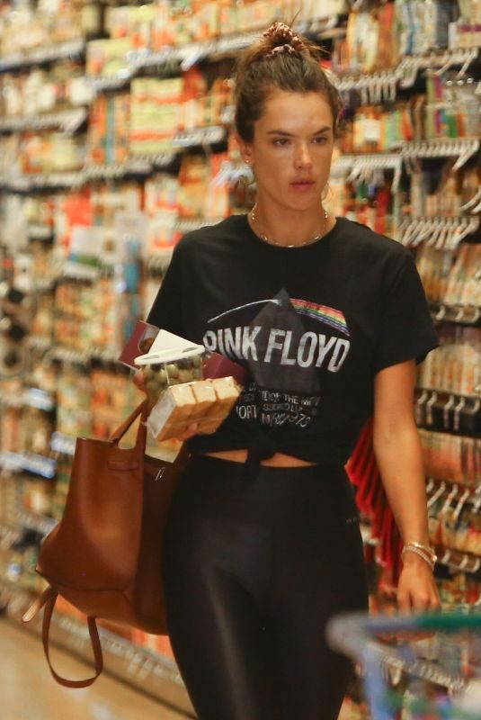 ALESSANDRA AMBROSIO Out Shopping in Los Angeles 08/10/2019