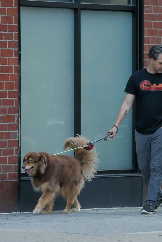 AMANDA SEYFRIED and Thomas Sadoski Out with Finn in New York 08/06/2019