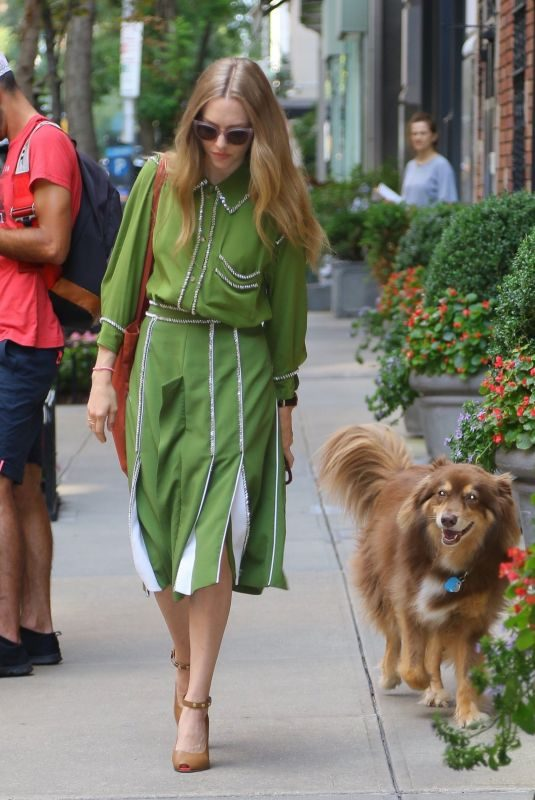 AMANDA SEYFRIED Out with Her Dog Finn in New York 08/06/2019