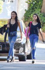 MILA KUNIS Out with a Friend in Sherman Oaks 08/20/2019