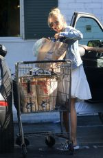REBECCA GAYHEART Shopping at Bristol Farms in Beverly Hills 08/13/2019