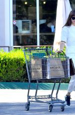 DAKOTA JOHNSON Leaves Grocery Store in Calabasas 09/13/2019