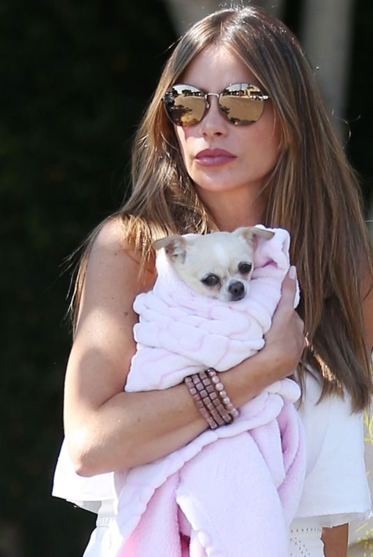 SOFIA VERGARA Out with Her Dog in Los Angeles 08/31/2019
