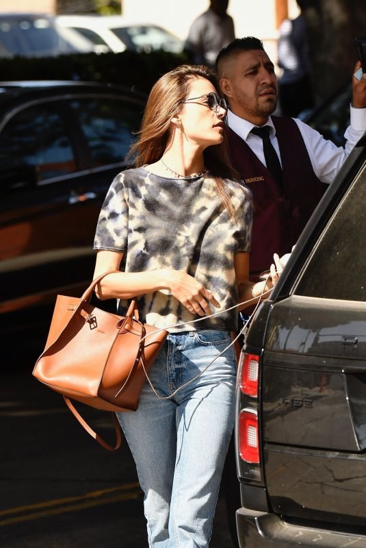 ALESSANDRA AMBROSIO Out for Lunch in Brentwood 10/30/2019