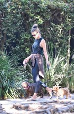 ALESSANDRA AMBROSIO Out with her Dogs in Brentwood 10/21/2019