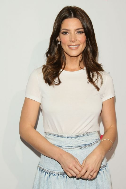 ASHLEY GREENE at A Time for Heroes Family Festival in Los Angeles 10/27/2019