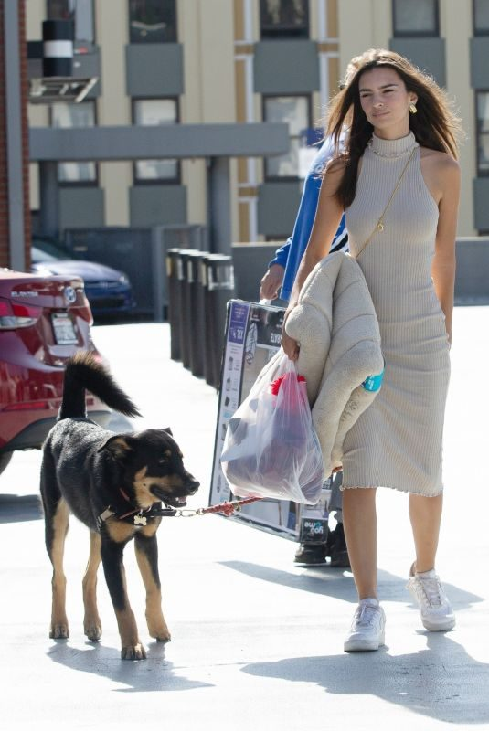 EMILY RATAJKOWSKI Out with Heer Dog Colombo in New York 10/30/2019