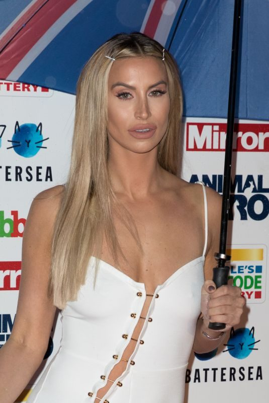 FERNE MCCANN at The Daily Mirror Animal Hero Awards in London 09/30/2019