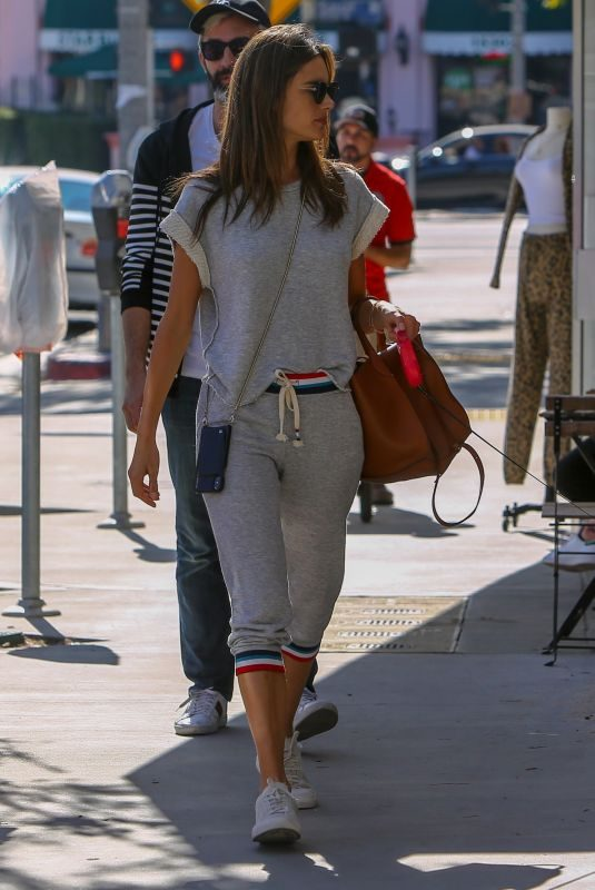 ALESSANDRA AMBROSIO Out Shopping in Pacific Palisades 11/02/2019