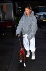 ARIANA GRANDE Out with Her Dog in New York 11/18/2019