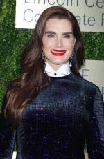 BROOKE SHIELDS at An Evening Honoring Leonard A. Lauder in New York 11/18/2019