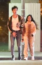 CAMILA CABELLO and Shawn Mendes Out in Los Angeles 11/13/2019
