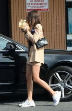 EMILY RATAJKOWSKI Out for Lunch in Los Angeles 11/13/2019