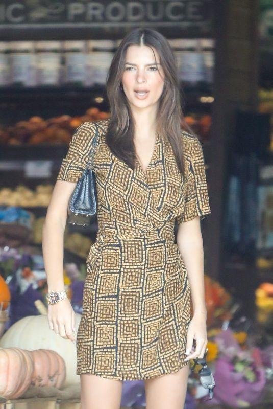 EMILY RATAJKOWSKI Out Shopping in Los Angeles 11/11/2019
