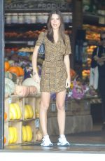 EMILY RATAJKOWSKI Out Shopping in Los Angeles 11/11/2019