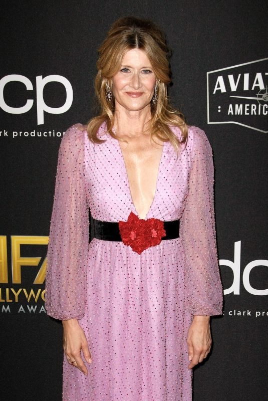 LAURA DERN at Hollywood Film Awards in Beverly Hills 11/03/2019