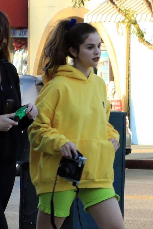 SELENA GOMEZ Shopping at Gelson's in Los Angeles 11/06/2019