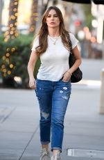 SOFIA VERGARA Out and About in Los Angeles 11/01/2019
