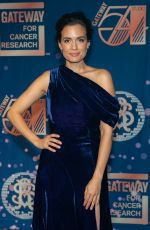 TORREY DEVITTO at Gateway for Cancer Research