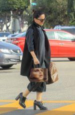 ANA DE LA REGUERA Out Shopping in Los Angeles 12/20/2019