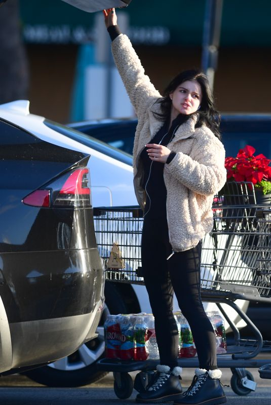 ARIEL WINTER Out Shopping for Grocery in Los Angeles 12/02/2019