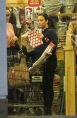 DEMI LOVATO Out Shopping in Los Angeles 12/18/2019