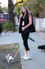 RACHEL MCCORD Out with Her Dogs in Los Angeles 12/04/2019
