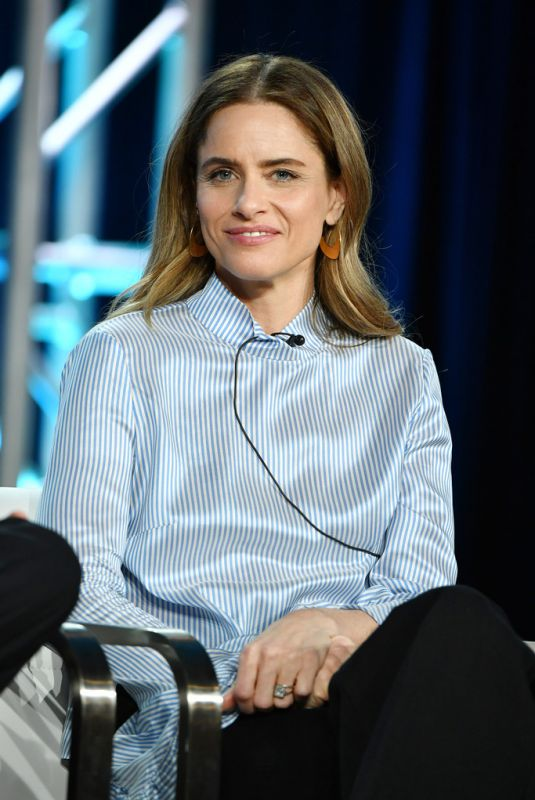 AMANDA PEET at 2020 Winter TCA Tour in Pasadena 01/16/2020