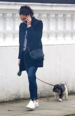 CHRISTINE BRINKLEY Out wuth Her Dog in West London 12/27/2019