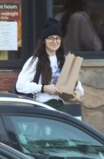 DAKOTA JOHNSON Shopping Groceries in Malibu 01/13/2020
