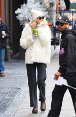 ELSA HOSK Out and About in New York 01/27/2020