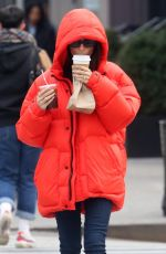 EMILY RATAJKOWSKI Out and About in New York 01/23/2020