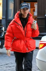 EMILY RATAJKOWSKI Out for Lunch in New York 01/20/2020