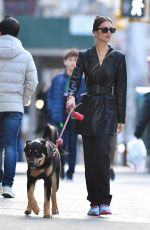 EMILY RATAJKOWSKI Out with Her Dog Colombo in New York 01/19/2020