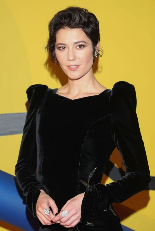 MARY ELIZABETH WINSTEAD at Birds of Prey Premiere in Mexico City 01/25/2020
