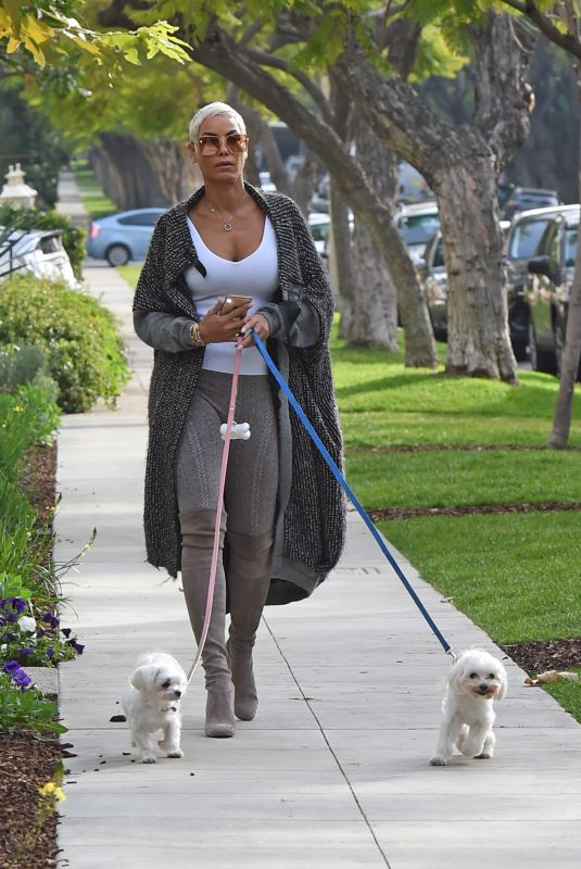 NICOLE MURPHY Out with Her Dogs in Los Angeles 01/03/2020