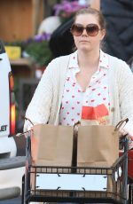 AMY ADAMS Out Shopping in Los Angeles 02/14/2020