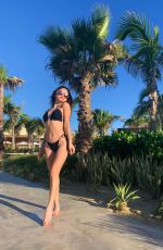 BELLA SHEPARD in Bikini - Instagram Photos and Videos 02/22/2020