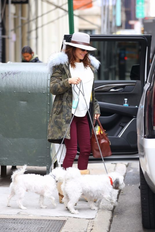 BETHENNY FRANKEL Out with Her Dogs in New York 01/31/2020