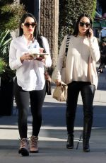 BRIE and Pregnant NIKKI BELLA Out in Los Angeles 02/14/2020