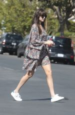 DAKOTA JOHNSON Out with Her Dog in Los Angeles 02/28/2020