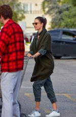 ALESSANDRA AMBROSIO Out Shopping in Santa Monica 03/20/2020