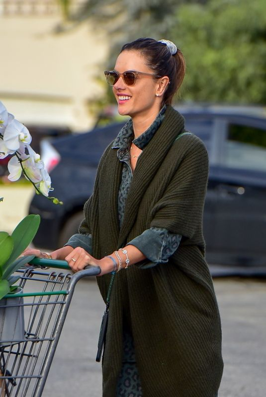 ALESSANDRA AMBROSIO Out Shopping in Santa Monica 03/20/2020