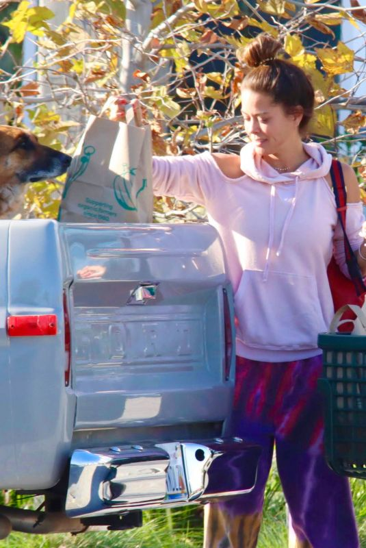 BROOKE BURKE Shopping for Flowers and Groceries Out in Malibu 03/223/2020