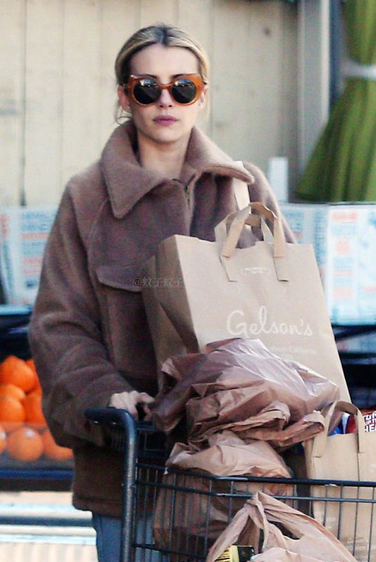 EMMA ROBERTS Out Shopping in Hollywood 03/25/2020