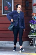 JORDANA BREWSTER Wearing Mask Out Shopping in Los Angeles 03/28/2020