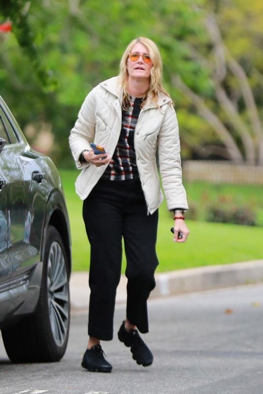 LAURA DERN Out in Los Angeles 03/22/2020