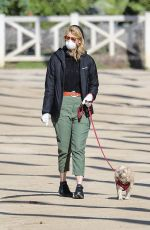 LAURA DERN Wears Mask and Gloves Out with Her Dog in Los Angeles 03/25/2020