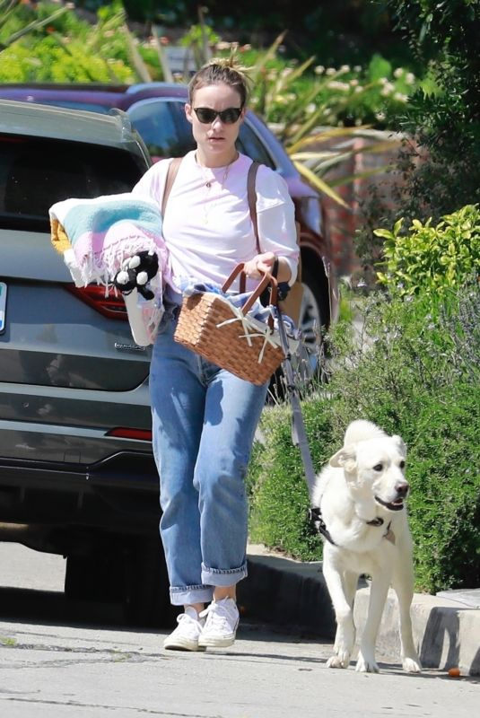 OLIVIA WILDE Out with Her Dog at a Park in Los Angeles 03/29/20